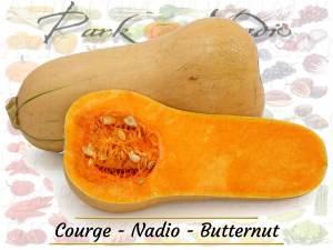 Courge - Nadio