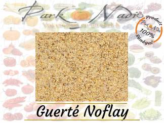 Guerte Noflay