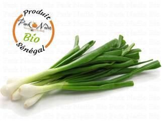 Livraison Oignon Vert Bio