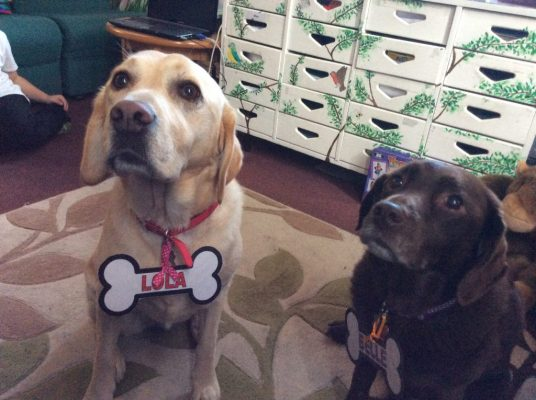 Dog therapy- special reading friends