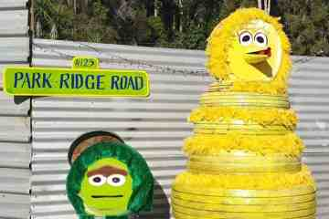 Can you help Big Bird out?