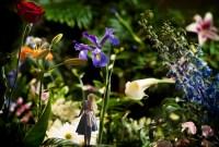 Festival Flowers Inspires a Unique Alice in Wonderland