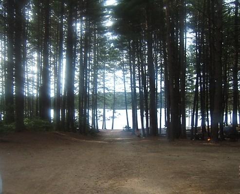 The beach at Pog Lake