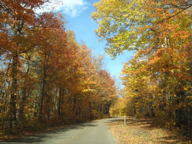 The drive into Canisbay campground in Autumn