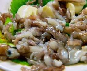 Sannakji squids