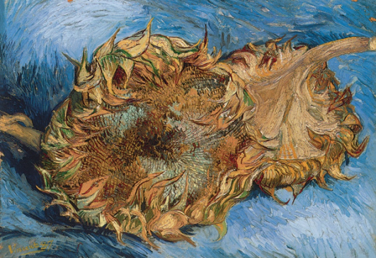 Sunflowers, Paris, August-September 1887. Oil on canvas, 43.2 x 61 cm. The Metropolitan Museum of Art, New York.