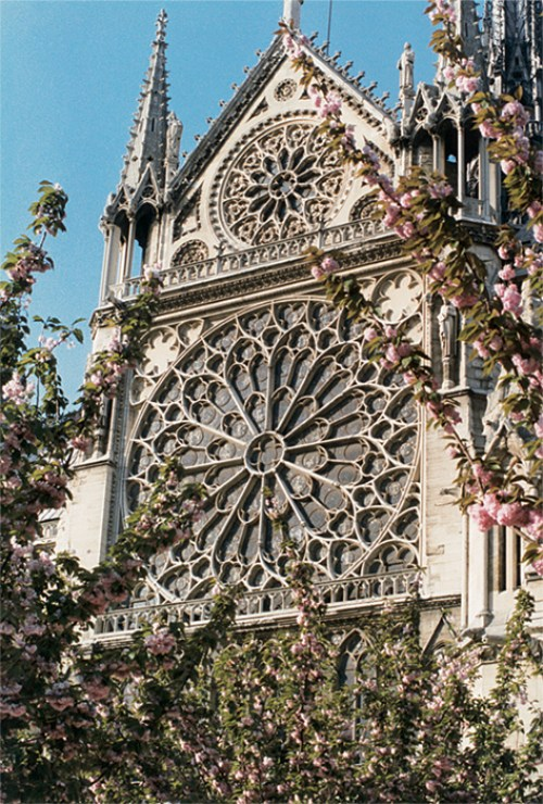Notre-Dame_1