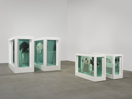 Hirst-Mother-and-Child-Divided