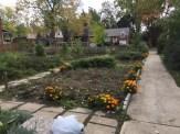 South Garden view