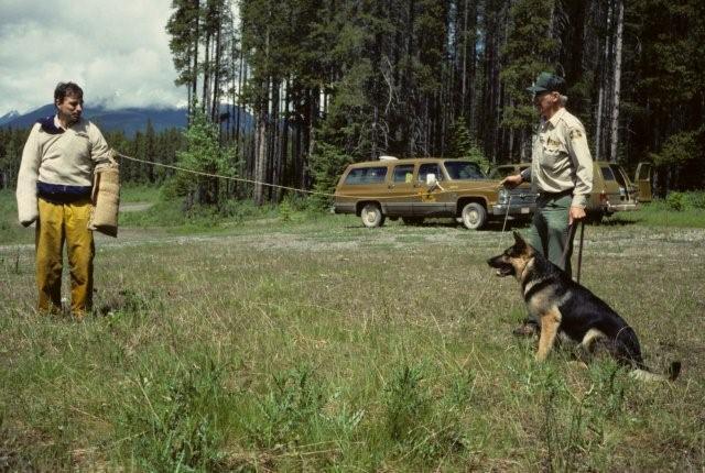 Dog Master Scott Ward with Dog Master Gord Peyto on a training exercise.
