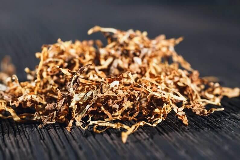 tütün yaprağı