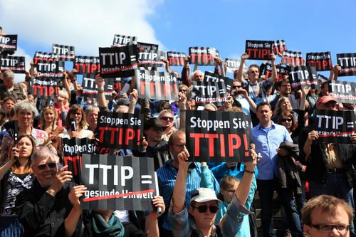 """Ttip, M5S: """"Governo si attivi subito per consultazione cittadini"""""""