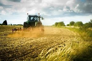 L.stabilità: su Imu governo risarcisca agricoltori