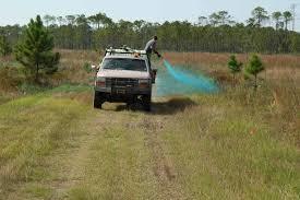 Agricoltura: Impegno governo ad aumentare controlli e utilizzo sostenibile dei pesticidi