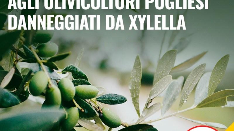 Agricoltura: Ok Camera a Decreto Emergenze. Sosteniamo ripresa comparti in crisi