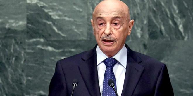 فخامة رئيس مجلس النواب يخاطب رئيس مجلس الأمن الدولي مؤكداً على شرعية عمليات الجيش الوطني