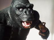 King Kong Aurora Custom Head close up 4