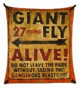 GIANT-FLY-john-dunivant-banner-