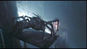 the mist spider pic 3