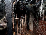 Haunted House Spook Show Rides - scenes 4