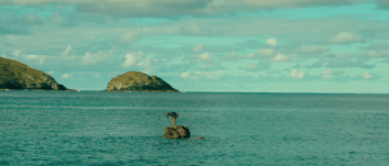 the shallows - pic 8
