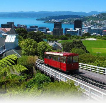 This is what Wellington, New Zealand looks like RIGHT NOW.