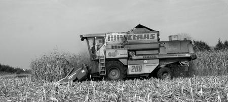 Farming31