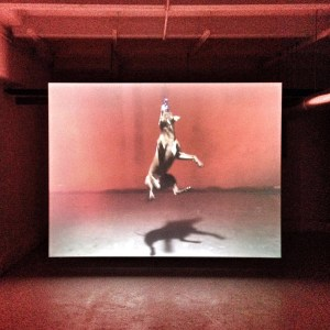 Video installation «Good Boy» by Aaron Young in the exhibition «Jaguars And Electric Eels» at Julia Stoschek Collection Berlin