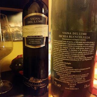 Vigna del Lume 2014 Mazzella. La Biancolella (e il piedirosso...) al top