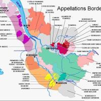 L'aromaticità dei grandi rossi di Bordeaux zona per zona