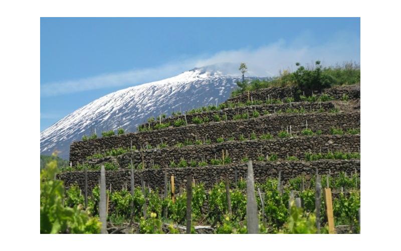 Etna: l'anno della consacrazione