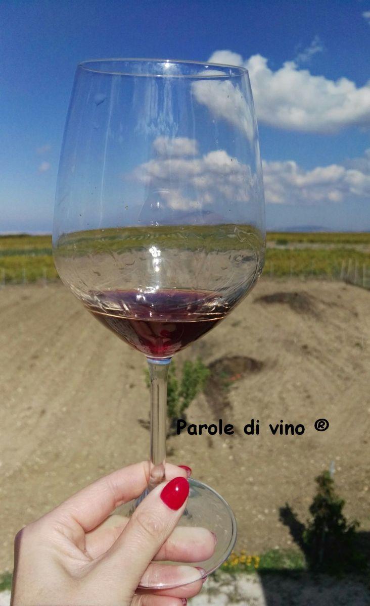 Nino Barraco: l'eleganza dei vini naturali