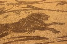 Ercole e Acheloo, dettaglio leone, Terme di Diocleziano