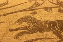 Ercole e Acheloo, leonessa, Terme di Diocleziano