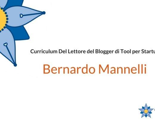 Curriculum Del Lettore di Bernardo Mannelli: blogger di Tool per Startup