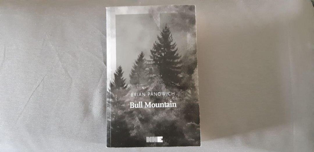 Bull Mountain di Brian Panowich: un romanzo brutale