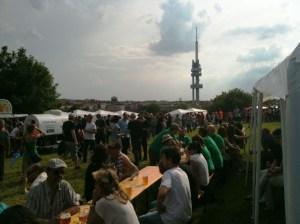micro brewery festival at Parukarka