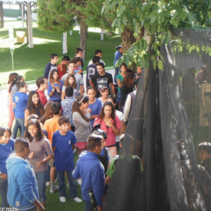 Curso de Verano 2015