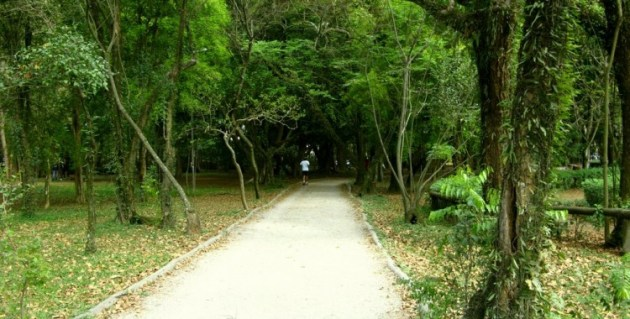 Pista de Cooper no Parque Ibirapuera. Percurso de terra. 1.2km. Foto Joannis Moudatsos