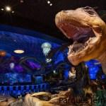 Entra a un mundo prehistórico en T-REX, donde los dinosaurios animatronic brindan la diversión, mientras tú te das el gusto con las creaciones de nuestro innovador menú. Desde sopas primitivas hasta postres irresistiblemente deliciosos, nuestra comida satisfacerá hasta a los cavernícolas más exigentes. Un tiranosaurio rex de 15 pies muestra sus dientes filosos y un pulpo gigante acecha en el fondo