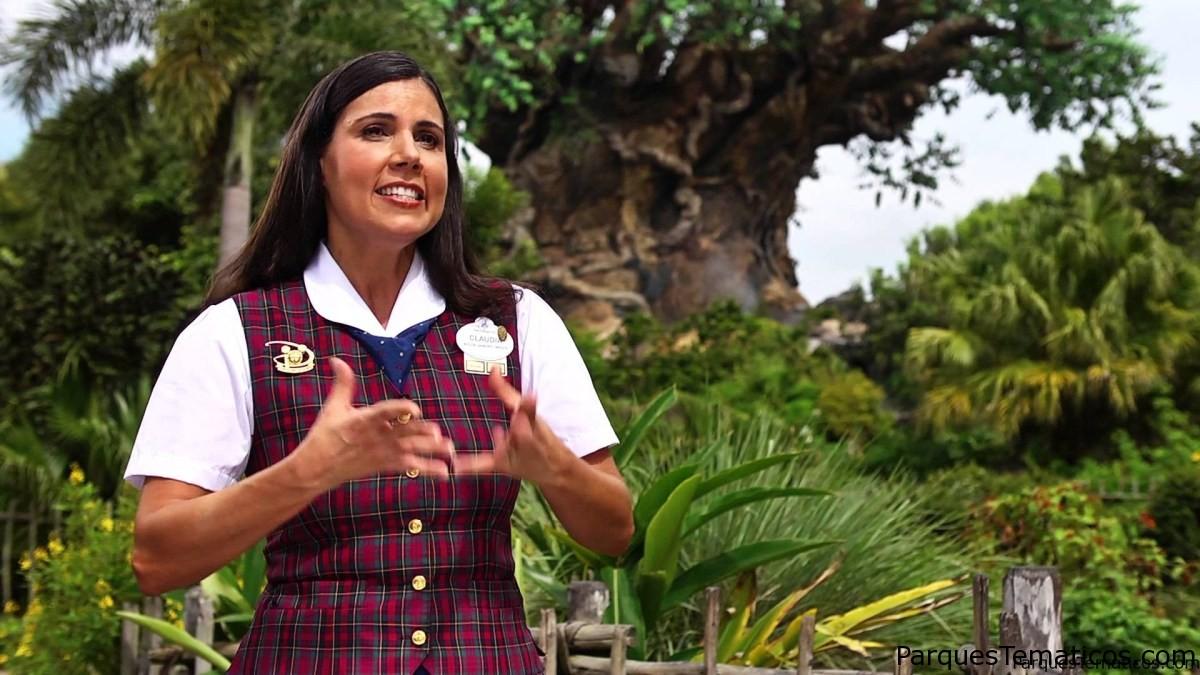 Preguntas frecuentes, FAQ, Walt Disney World 2019
