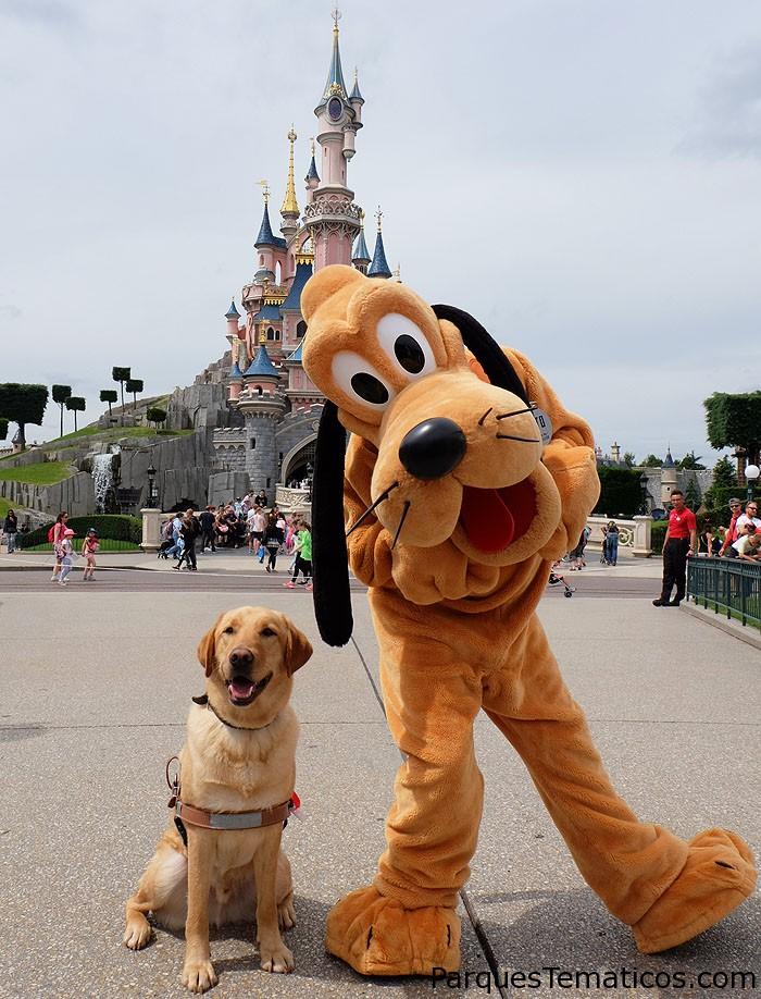 Perros de asistencia en Disneylandia Paris