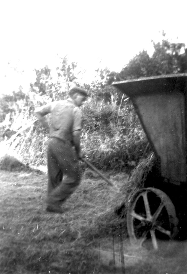 Hay cart - kind permission of John Petherick