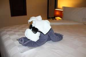 The Towel Dog with Jenna's Glasses