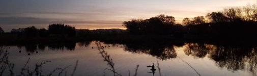 Got to love sunsets over the pond 1