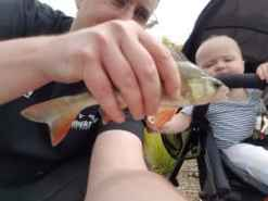 Fishing with kids and a little Lake Perch