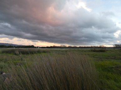 sunset wairarapa
