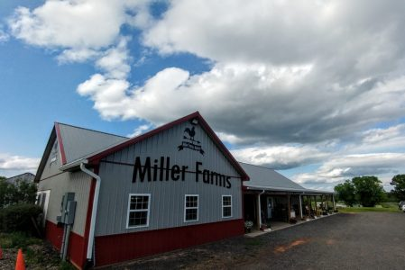 Fun, Cheap, and Easy Ideas to Do With Your Kids Today- Miller Farms – Spotsylvania, VA