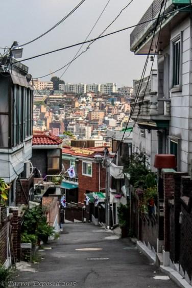 Hills of Haebangchon