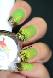 chocolate lime thermal parrot